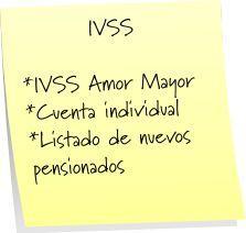 IVSS Cuenta Individual Instituto Venezolano de los Seguros Sociales